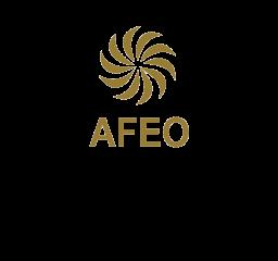 ASEAN Federation of Engineering Organisations (AFEO) Award